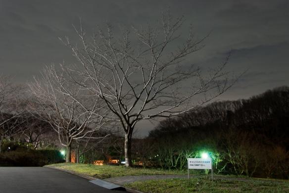 TITech_spring-5